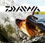 daiwa2