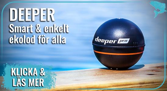 Deeper2021