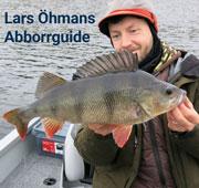 Lars Öhmans Abborrguide