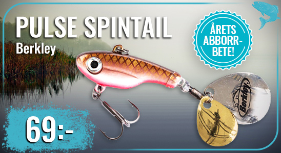 Pulse_spintail