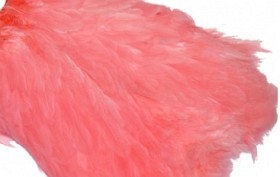 Hen Patches/Soft Hackle - Salmon Pink