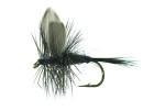 Black Gnat Black TMC 100 # 12