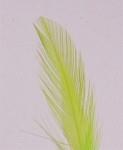 Fluorescerande färgpulver - green