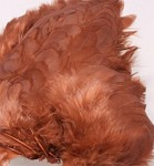 Hen Patches/Soft Hackle - Brown