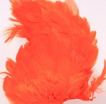 Hen Patches/Soft Hackle - Orange