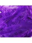 Hen Patches/Soft Hackle - Purple