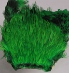 Indisk tuppnacke - Green highl.