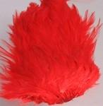 Indisk tuppsadel - Röd