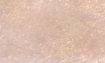 SLF-Prism - Sand