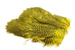 Soft Hackle Patch - Grizzly Yellow