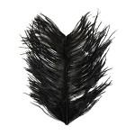 Struts herl - Black