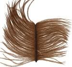 Struts herl - Brown