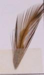 Veniard färg för fjäder och hår - olive dun
