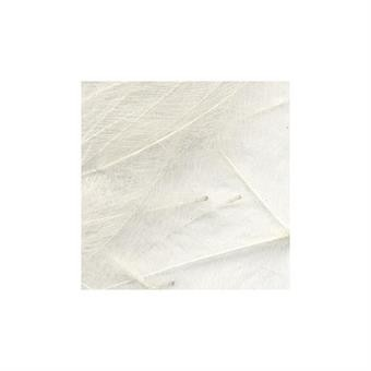 CDC Feathers 1 gr -  White