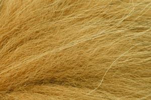 Furmaster Marble Fox, Golden O