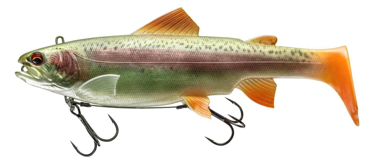 Prorex Trout SB 250DF Live R Trout