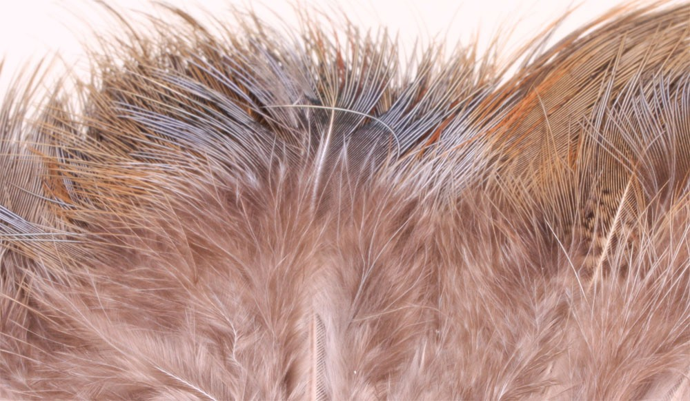 Ringneck Rump Hackle - Natural