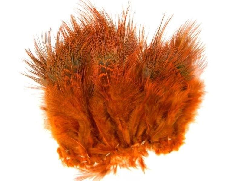Ringneck Rump Hackle - Orange