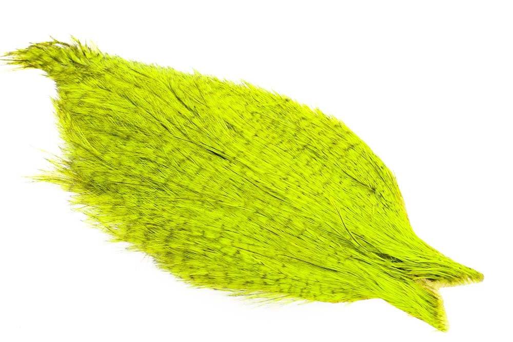 Whiting Coq de Leon tuppnacke - Badger/fluo Yellow Chartr.