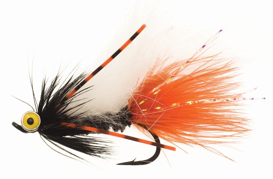 Zonky Orange/Black TMC7989 # 6